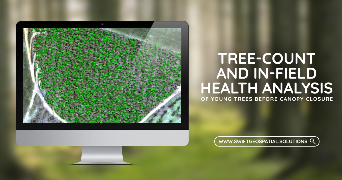 TREE_COUNT_3_FEATURE