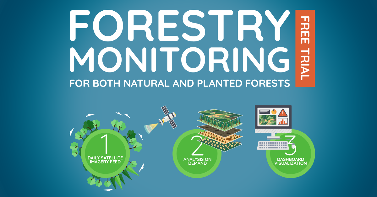 FOREST_MONITORING_LINKEDIN_FEATURE