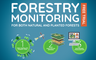 FORESTRY_MONITORING
