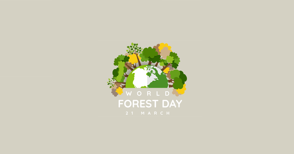Forest Day | Swift Geospatial | Forestry Monitoring