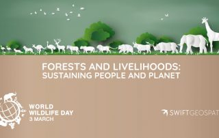 World Wildlife Day 2021 | Swift Geospatial | Forestry