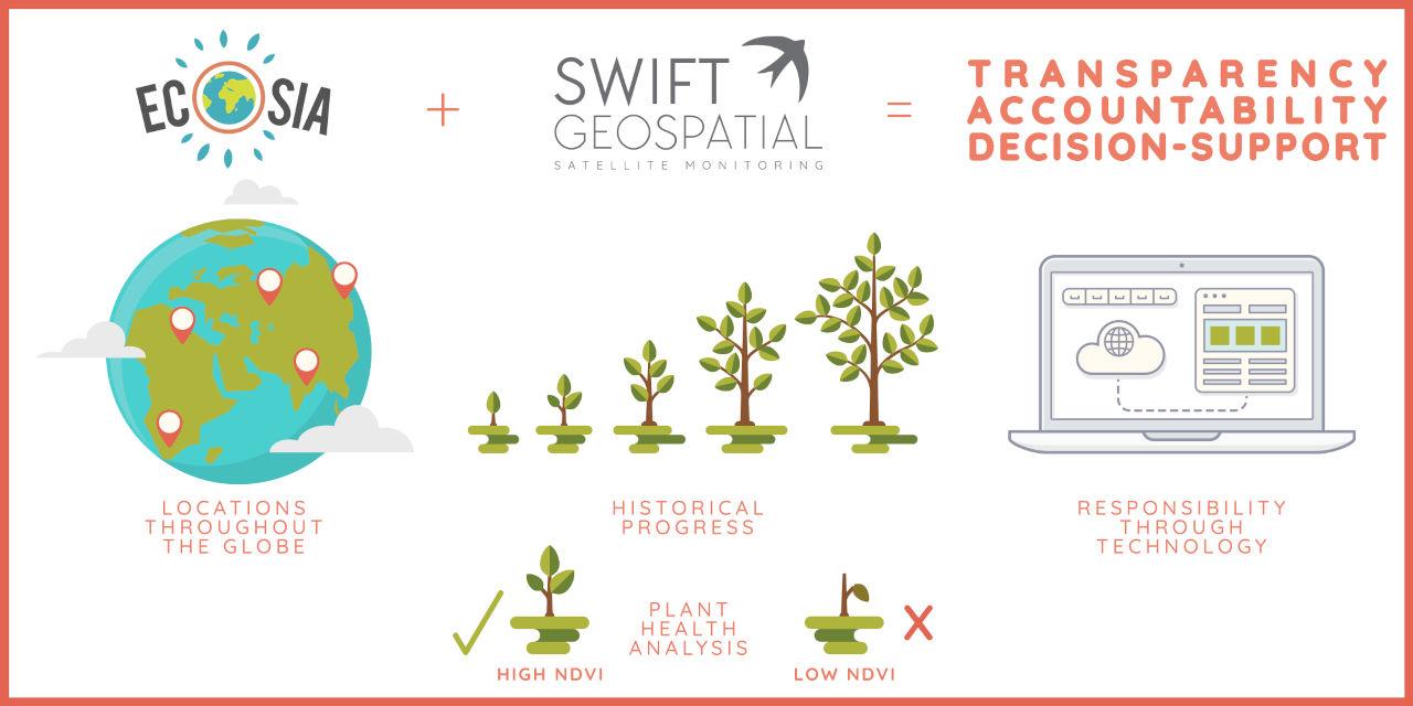 Ecosia Satellite Monitoring | Tree Monitoring | Swift Geospatial